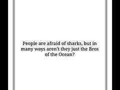 Bros of the Ocean